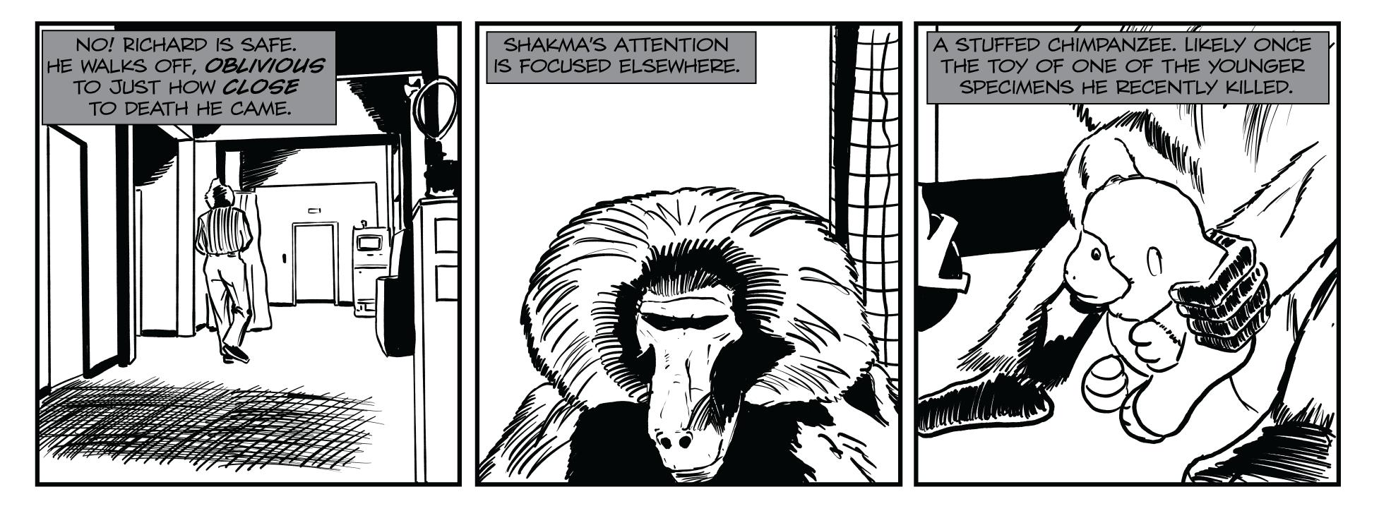 Shakma 060